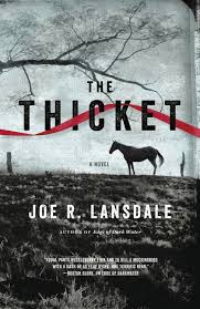 Joe Lansdale's new novel The Thicket is about X. You can read a free excerpt on Facebook.