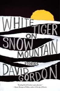 """David Gordon's new story collection, White Tiger on Snow Mountain, features sex, murder, ghosts, and frauds. Its opening story, """"Man-Boob Summer,"""" was published in The Paris Review."""