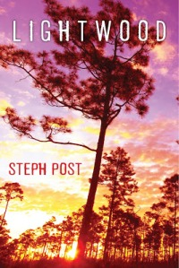 Steph Post's crime novel, Lightwood, tells the story of a released convict who, upon his release, must face his powerful family, a vicious Pentecostal con artist, and a biker gang.
